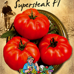 Tomate Supersteak F1