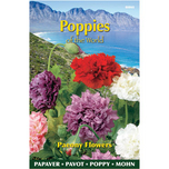 Poppies of the world - Papaver Paeoniflorum Gef. Misch.