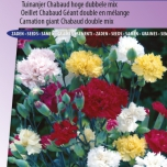 Nelke Chabaud Mix – Dianthus Chabaud